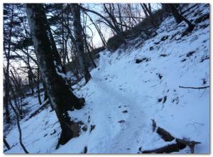 雲取山(雪の登山道)
