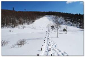 入笠山トレイル