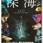 特別展【深海】国立科学博物館感想!深海魚嫌いでもおすすめの理由は?